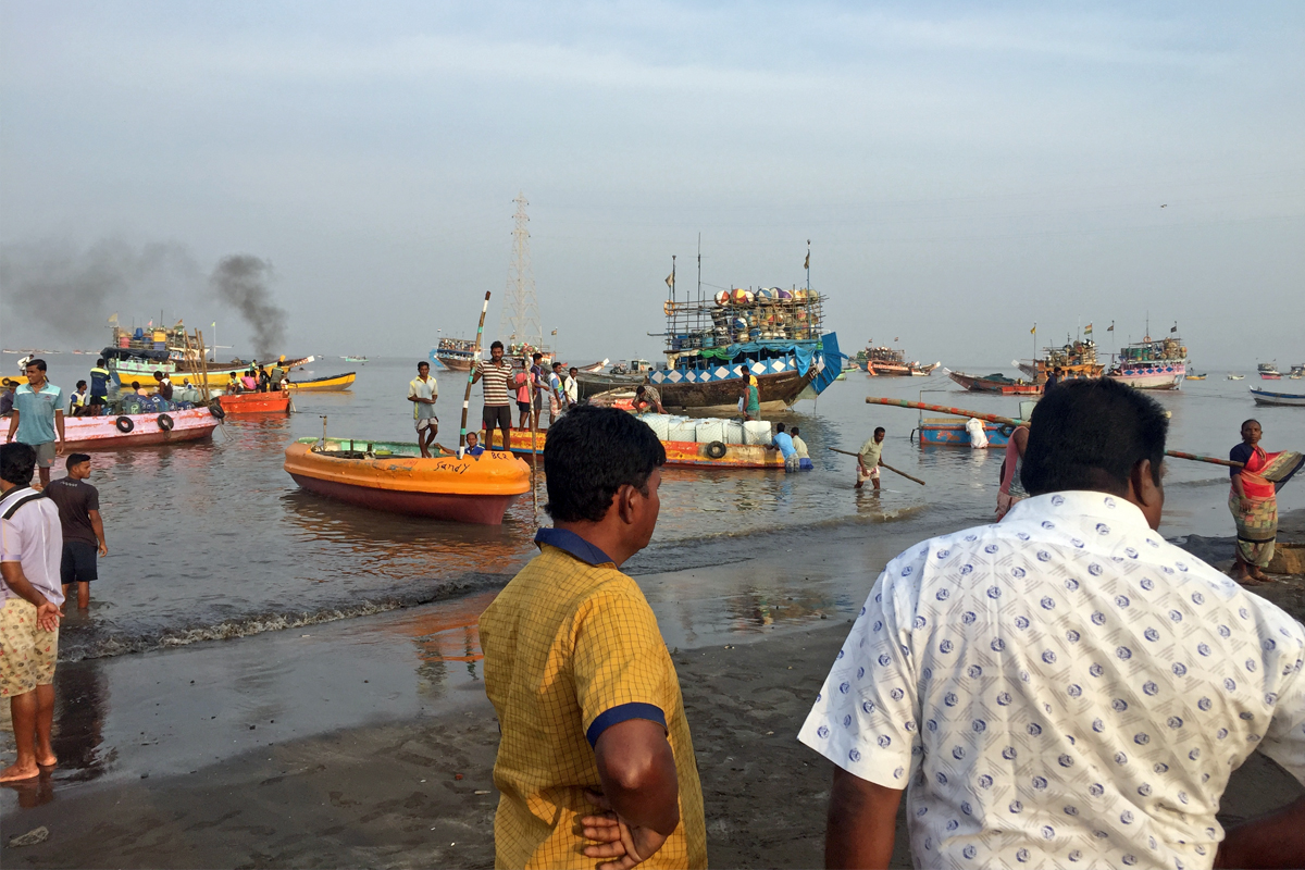 Large scale mechanised fleets to the small scale fishers across India's coastline have suffered an economic blow due to the lockdown. The sector directly supports the livelihood of about 16 million Indians. Photo by Kartik Chandramouli.
