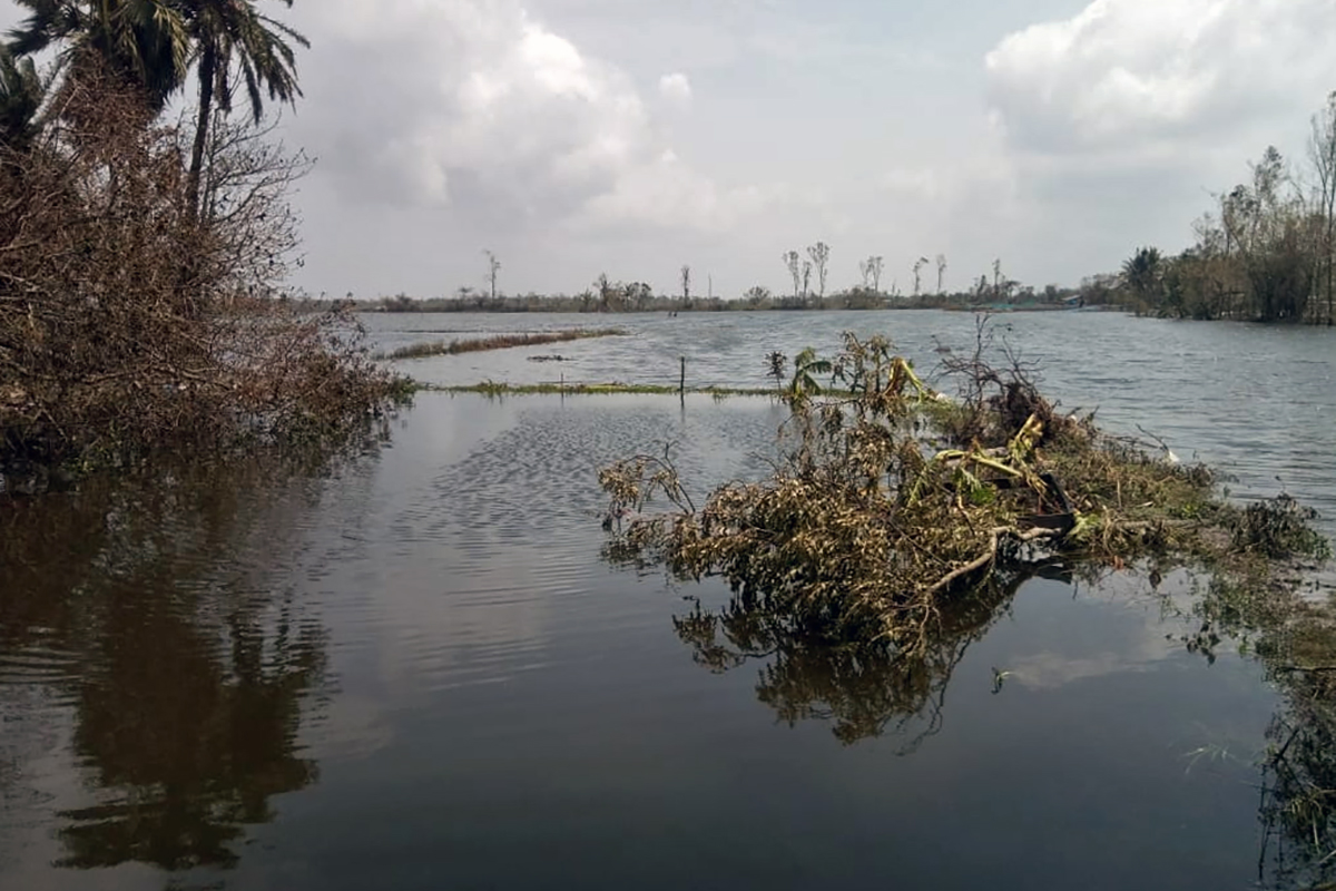 Submerged paddy fields in Patharpratima in South-24 Paraganas. The communities were just recovering from the long-term damages to fields caused by Cyclone Aila over a decade ago. Now, Amphan has pushed them back in time. Photo by Sudhansu Maity.