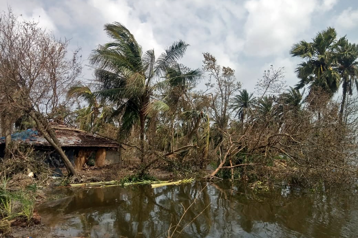 Damaged trees and houses in Patharpratima in South-24 Paraganas. As the frequency of events such as Amphan increase due to climate change, it is essential to involve the communities in adaptation and resilience building activities. Photo by Sudhansu Maity.