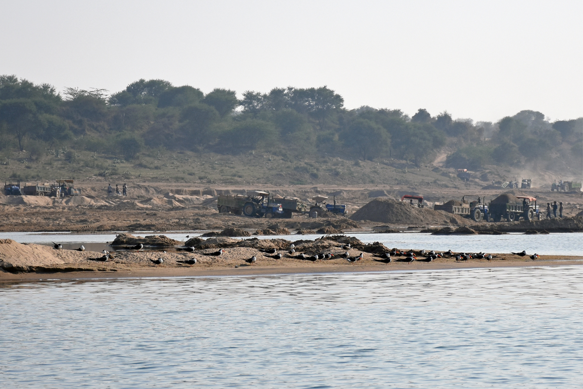 The movement of fishing boats causes disturbance and activities such as sand mining might have long-term effects on nesting-island formation. Photo by Parveen Shaikh.