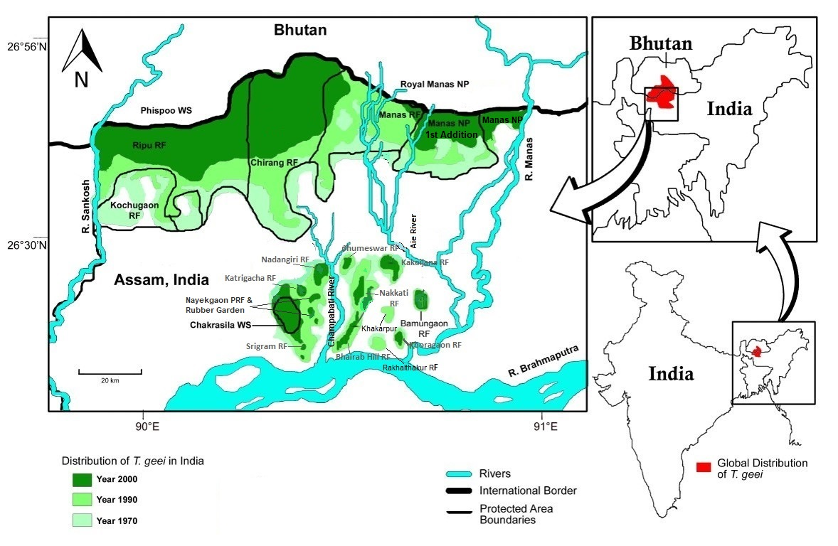 Distribution of the golden langur in India. In Assam, most of their population is outside protected areas. Map from J. Biswas.