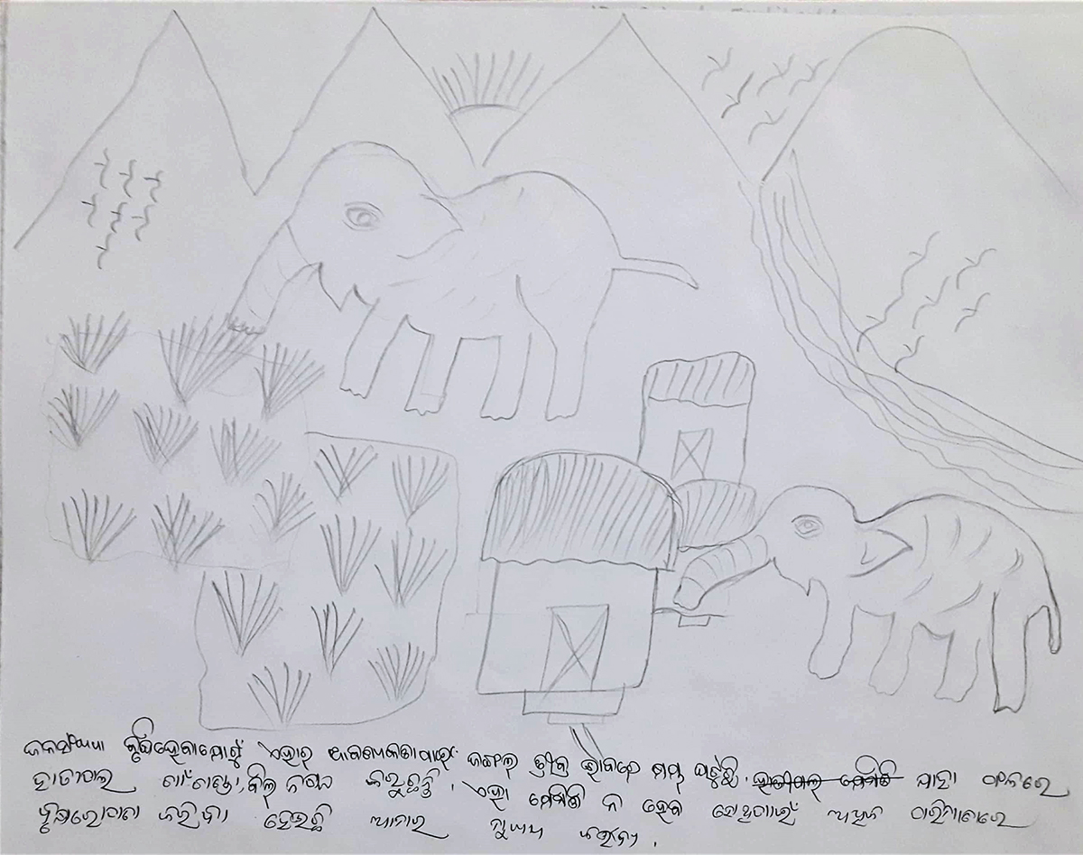 """A sketch by a child in Odisha's Balasore district about human-elephant interactions read: """"To meet the demands of escalating human population, the forests lands are being damaged. Hence, elephants are coming to nearby villages and also raiding crops. In order to prevent this, planting a lot of trees must be our priority."""" Photo from Medha Nayak."""