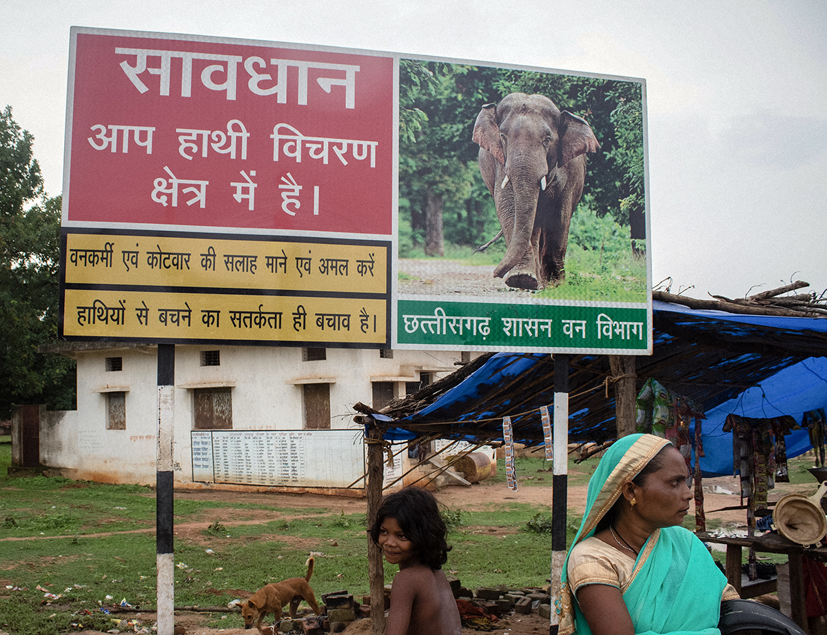 A board by Chhattisgarh Forest Department near the proposed Lemru elephant reserve in Hasdeo asking people to beware of wild elephants. Photo by Vaishnavi Suresh.