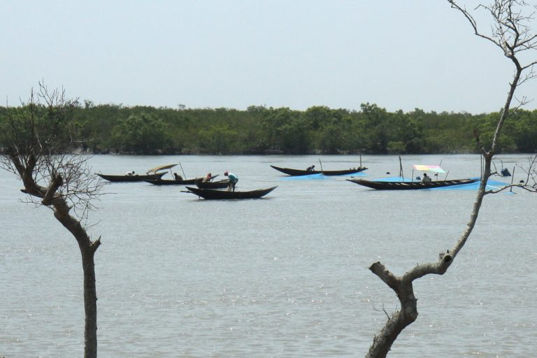 Sundarban fishing in river 2 - photo Snigdhendu Bhattacharya