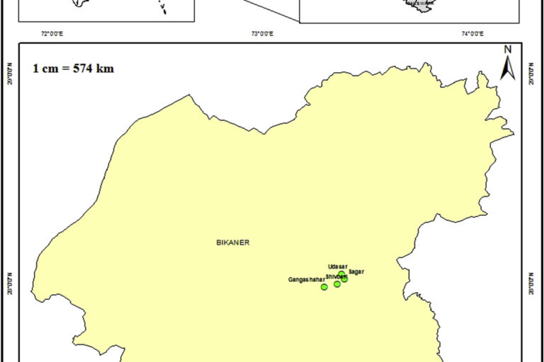 Map showing the locations where Aloe trinervis was found in the district of Bikaner, Rajasthan. Map from Kumar, Purohit & Kulloli, 2020.