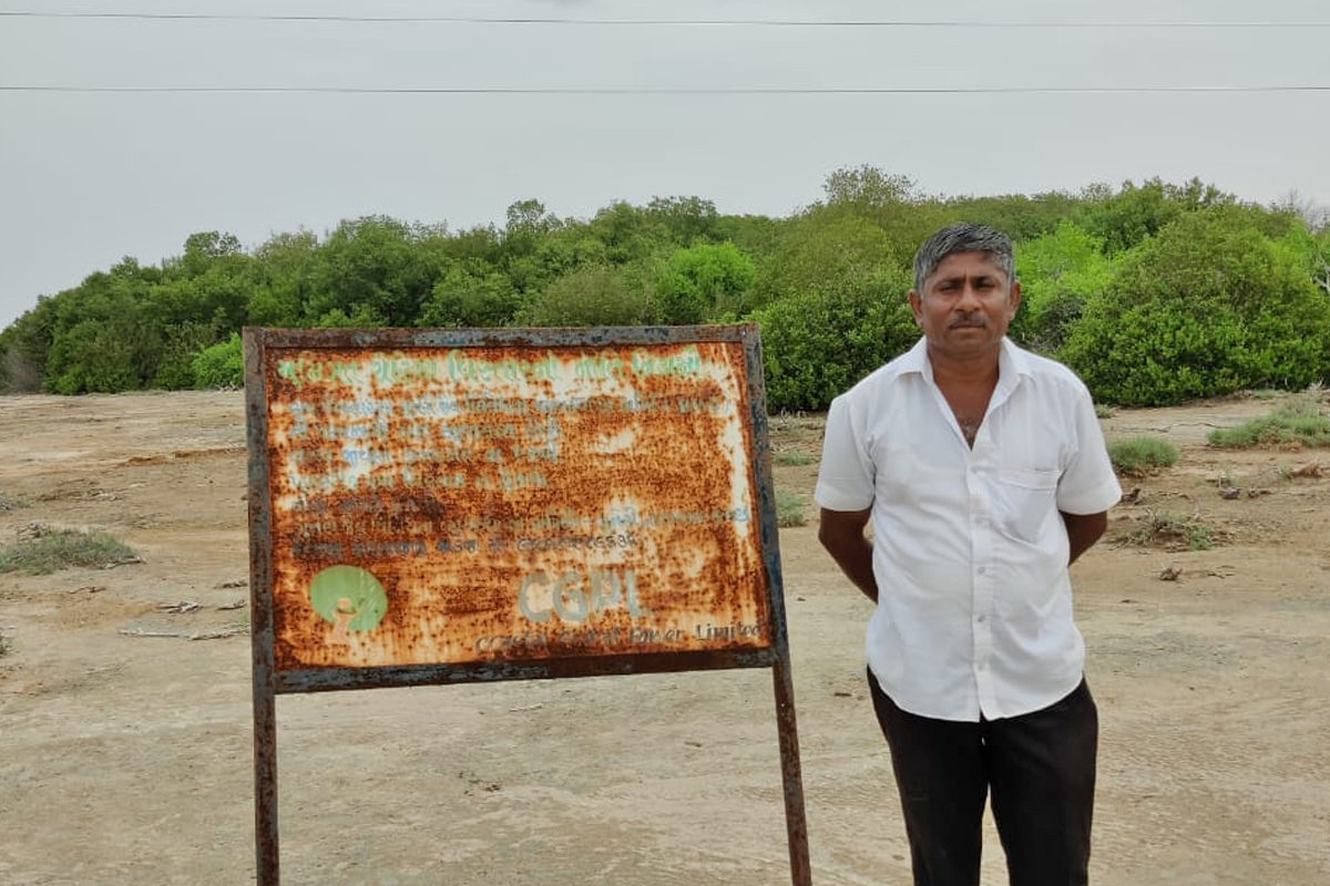 Jadeja Devaji Negrajji or Deva bhai stands in front of the five-hectare Guneri inland mangroves. Due to the efforts of the community, the wetland ecosystem has been conserved. Photo from Deva Bhai.