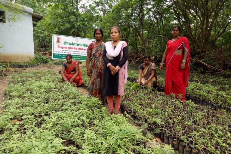 Sunita Varman (in sari) with other SHG members in the herbal garden. Photo by Azera Parveen Rahman.