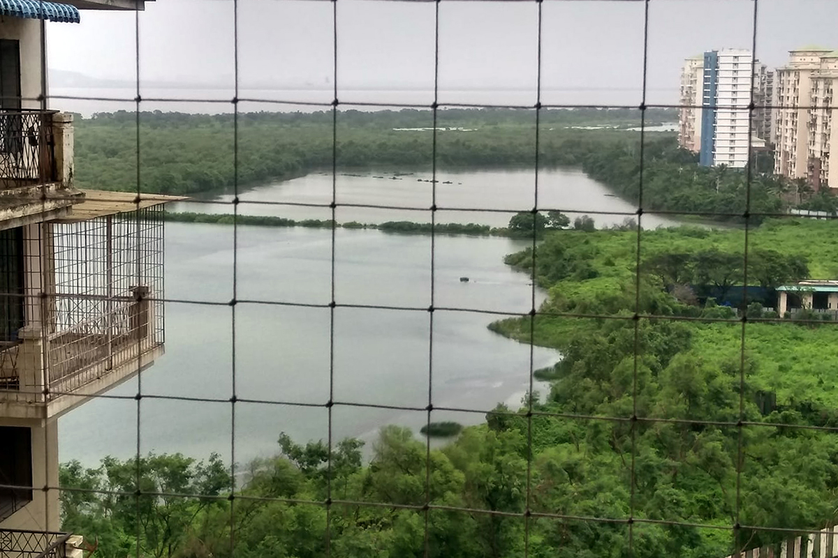 View of Navi Mumbai's Talawe wetland, the proposed site for a golf course and residential towers. The Bombay High Court has quashed the notification based on the petition filed by the Agarwals. Photo from Sunil Agarwal.