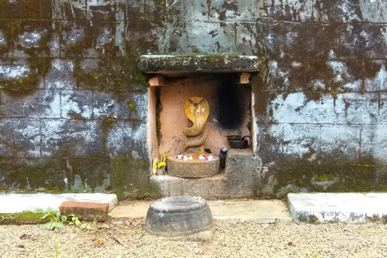 A serpent deity outside a temple in Kodagu. Photo by U. Prashanth Ballullaya.