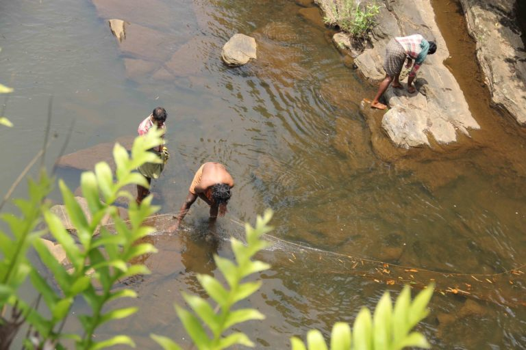 Youth from the Kadar community in Athirapilly fishing in a tributary. Photo credit by Aathira Perinchery.