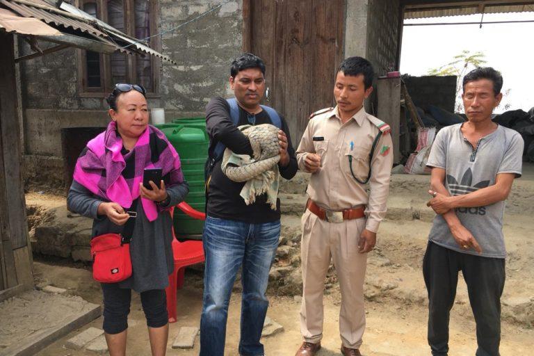 Daniel Macwan and Gelina Newme of Tamenglong Animal Home with a rescued Chinese Pangolin Photo Credit- Daniel Macwan (1)