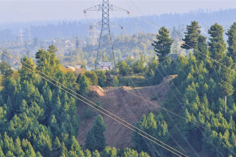 A power transmission line passing through the Budgam forests. Photo by Athar Parvaiz.