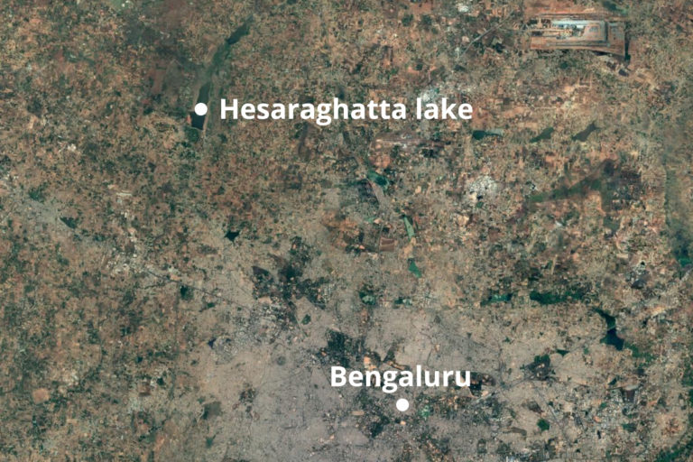 The 1912 acre Hesaraghatta lakebed is surrounded by 356 acres of grassland. Map from Google Earth.