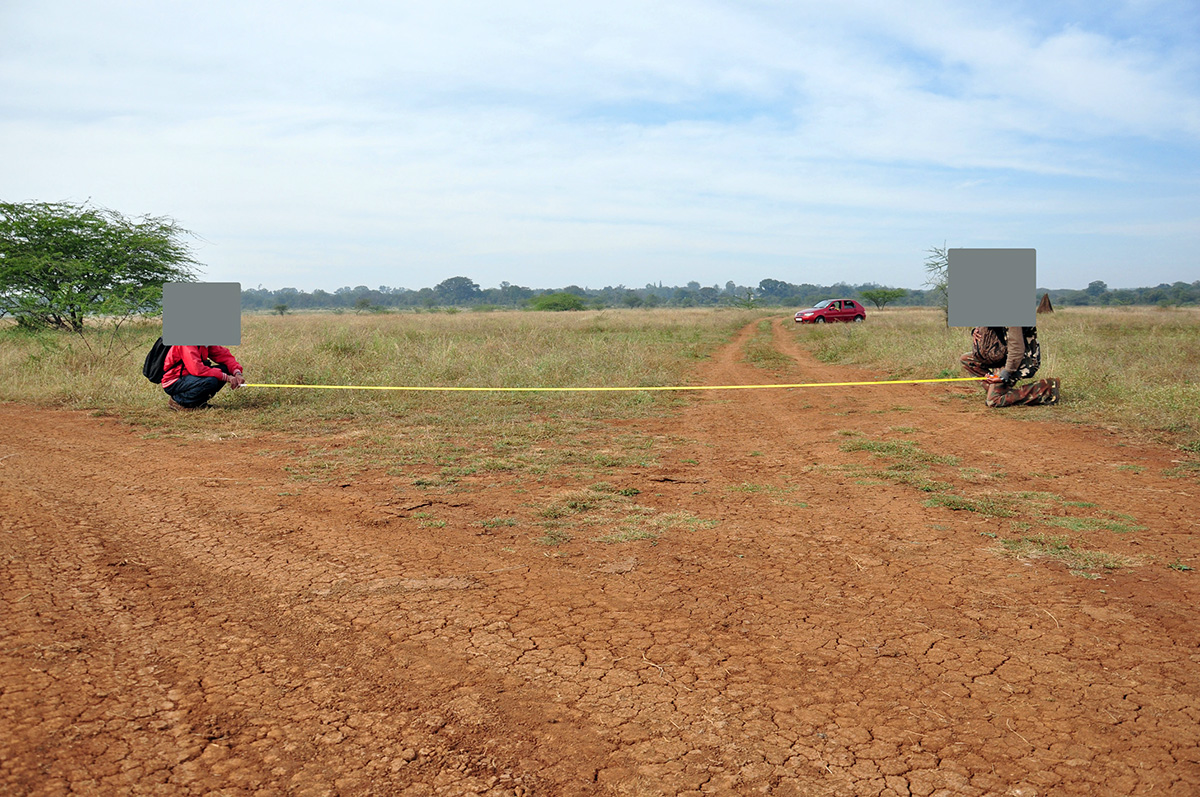 Researchers study the impact of vehicles on grasslands at Hesaraghatta. Photo by K.S. Seshadri.