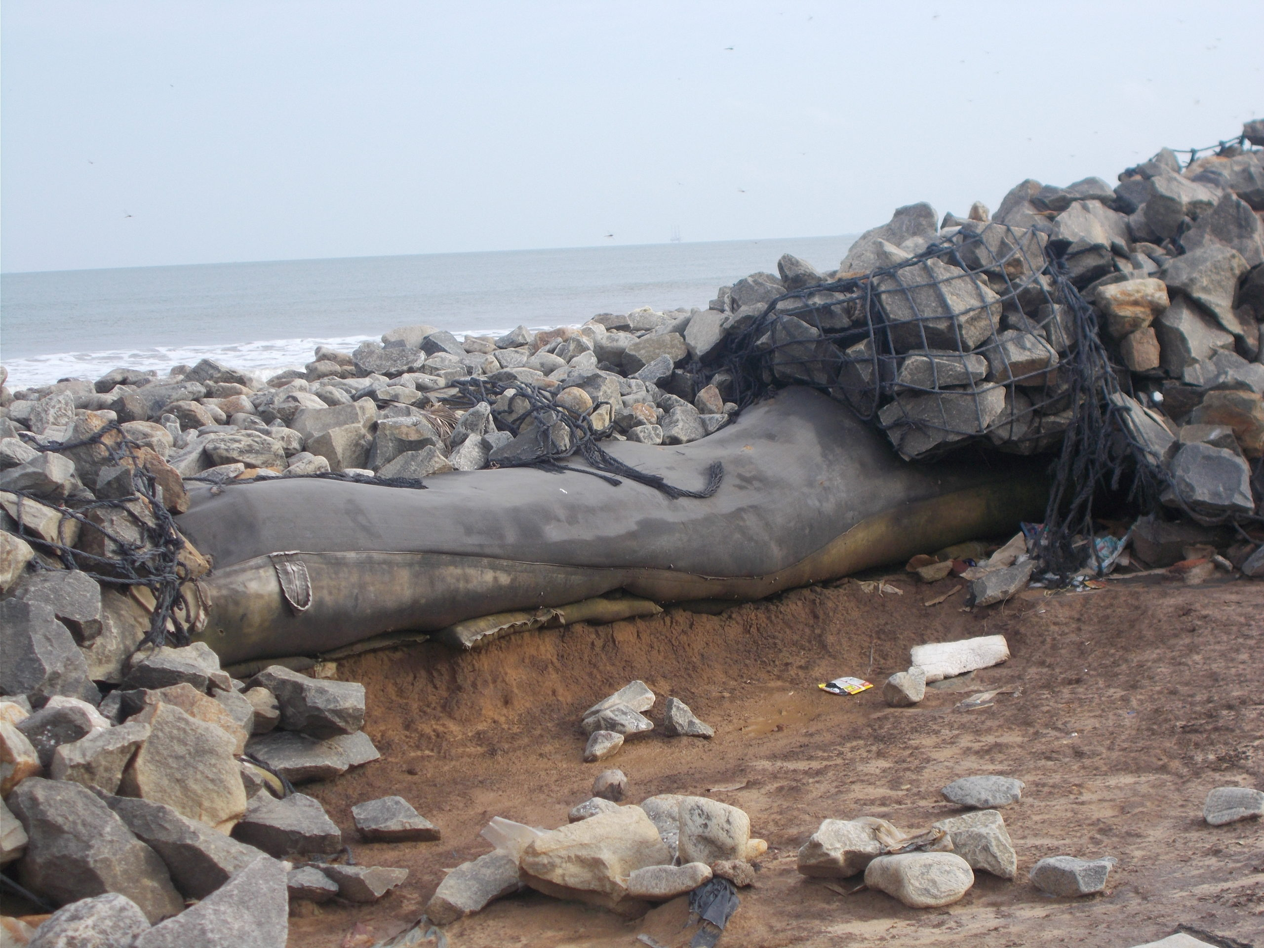 A damaged geo-tube at Uppada in Andhra Pradesh. Credit-By arrangement