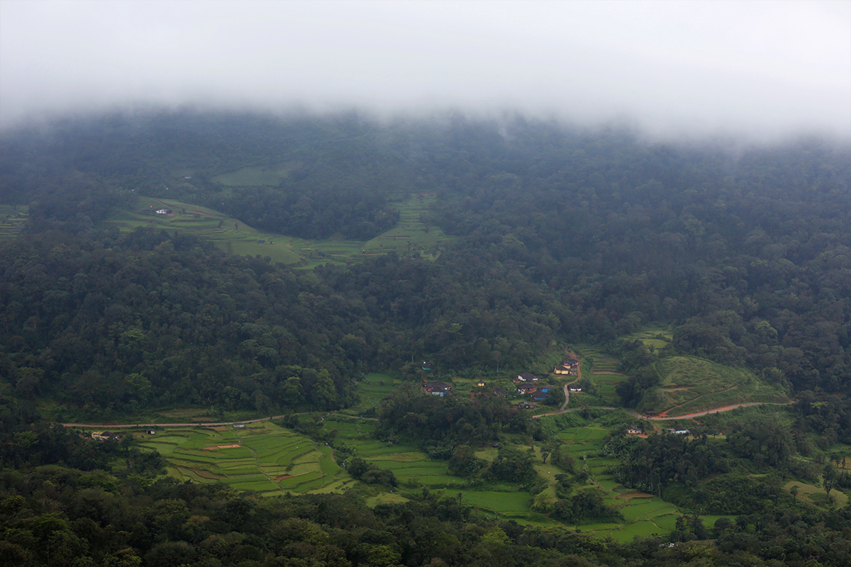A mosaic of farmlands and forests in Coorg, Karnataka. Fragmentation of habitats has been pushing the gaur into human-dominated areas. Photo by Abhishek N. Chinnappa for Mongabay.