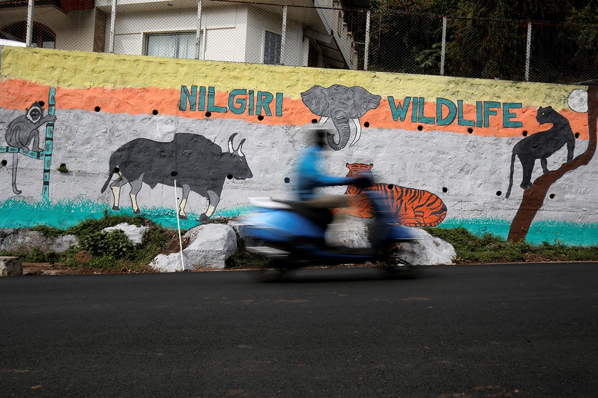 mural conoor