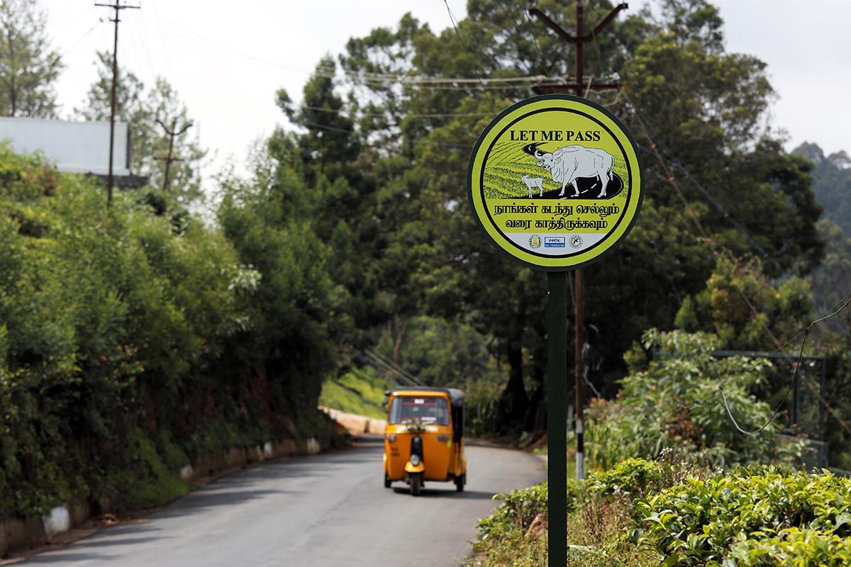 gaur signage in kotagiri