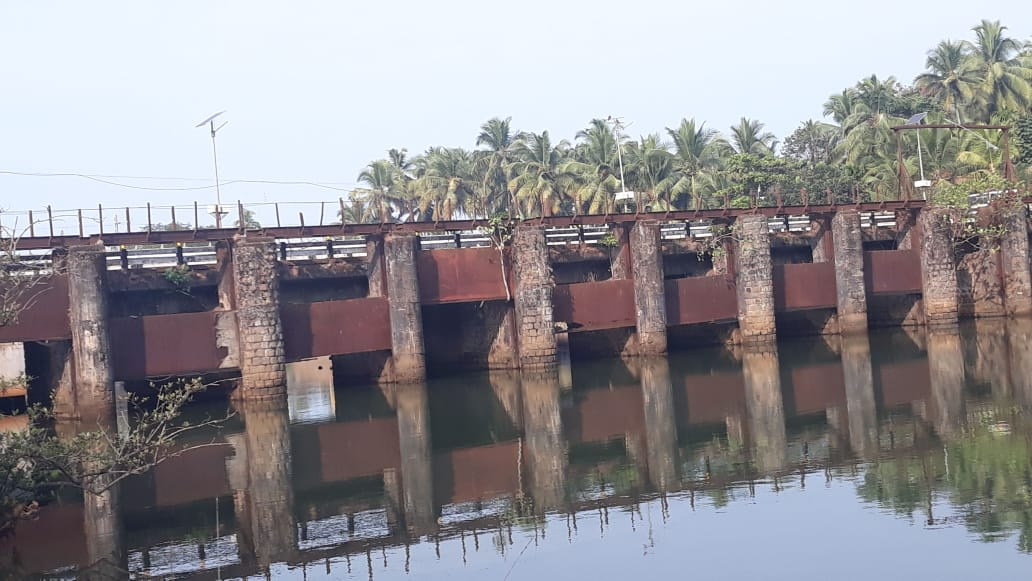 The bridge from which the crab was collected. Photo by Mr. Riyas A.