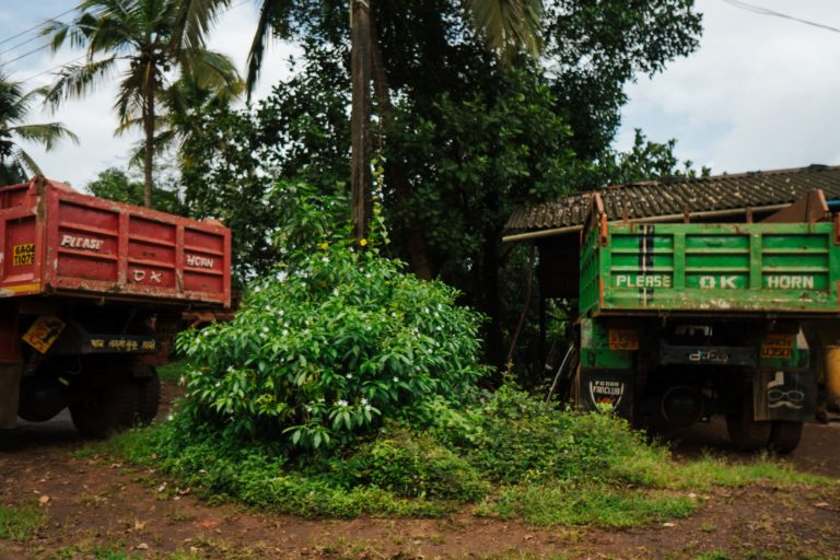 Trucks which were involved in the mining industry are lying unused. Photo by Mohit Kapil.