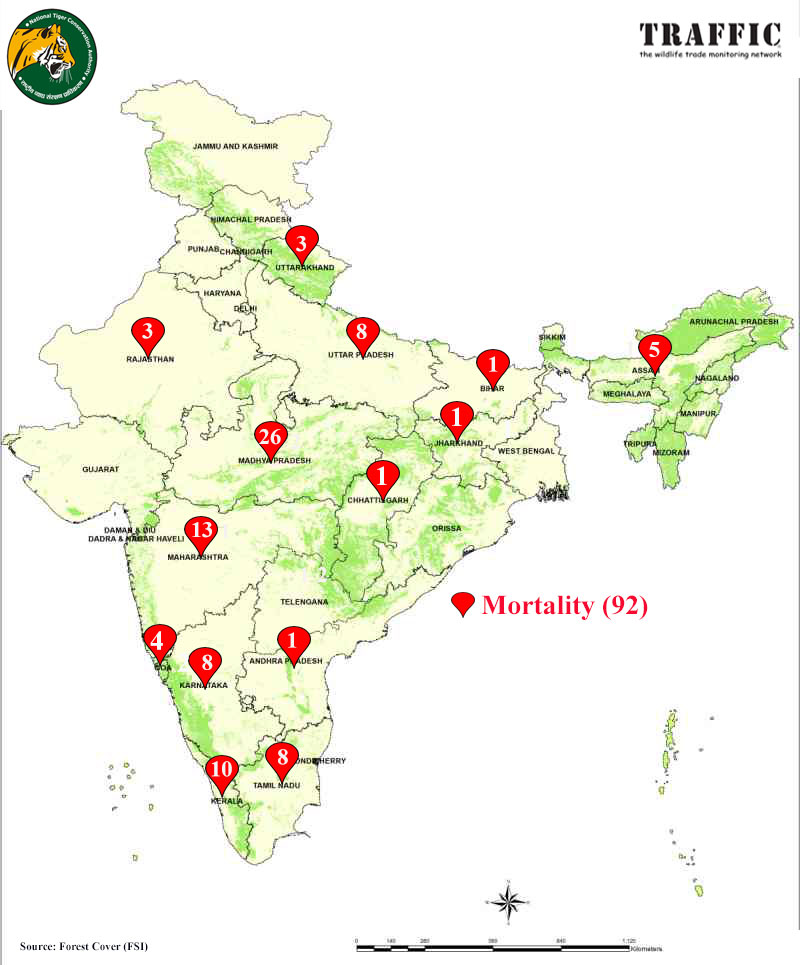 Static map of tiger Mortality in 2020. Madhya Pradesh lost 26 tigers this year out of 99 tigers that died in 2020 in the country. Photo- TRAFFIC