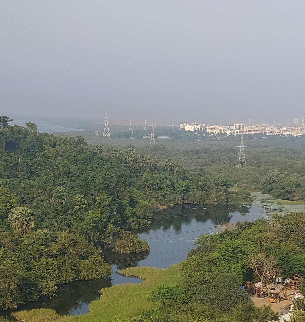 A view of the Tarzon Lake in North Mumbai. The lake, which recorded 79 species of birds by ebird.org in 2020 has now been cordoned off for visitors. Photo by Hepzi Anthony.
