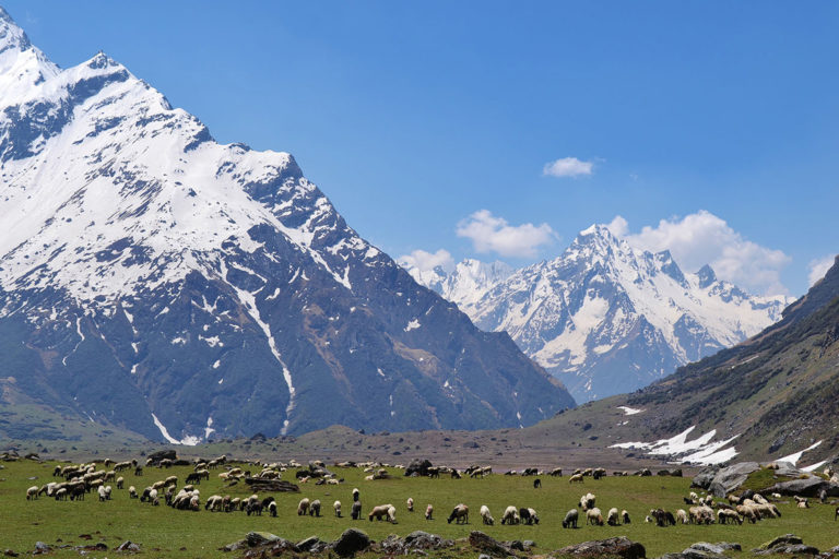 Chamylia valle. The ecosystem services produced in the region support 240 million people living in the upland and lowland areas of the Hindu Kush Himalya. Photo: Pradyumna J.B. Rana/ICIMOD.
