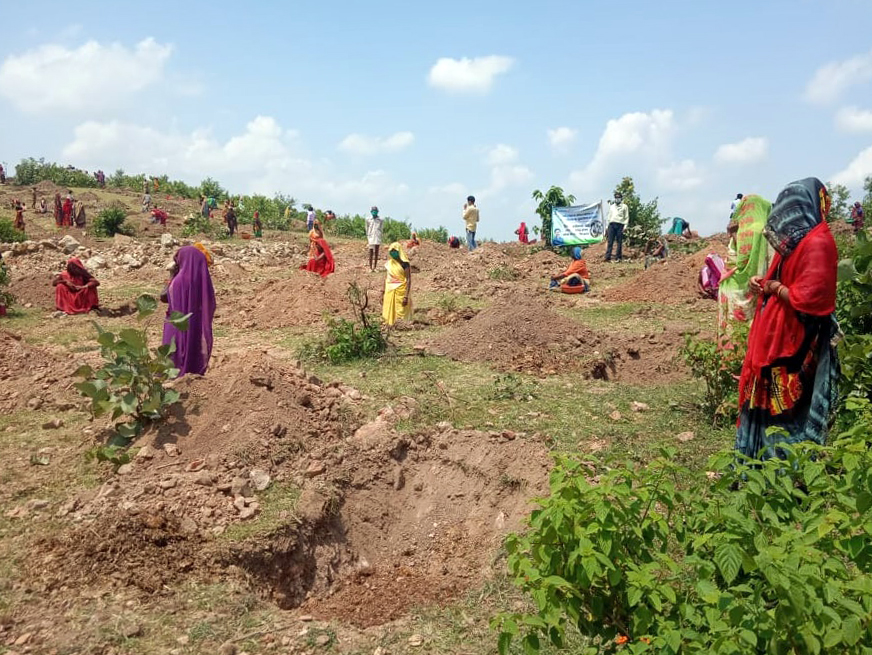 Women carried out plantation work in Agrotha in addition to reviving a pond. Photo from Parmarth Samaj Sevi Sansthan.