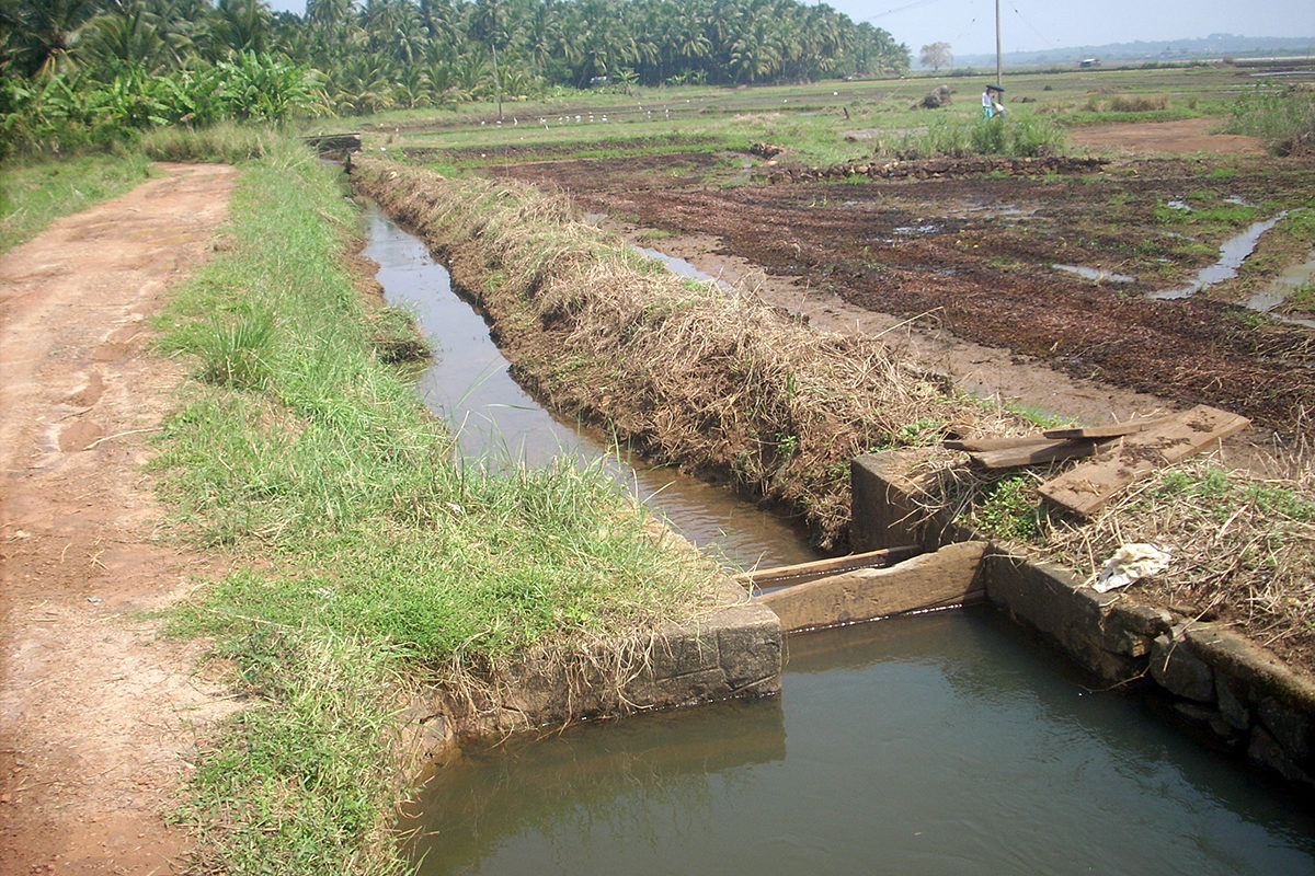 Farmers follow an elaborate process of dewatering, storing and recycling water from the wetlands to facilitate paddy cultivation and maintain water in the wetlands. Photo by Manojk/Wikimedia Commons.