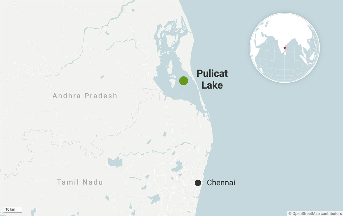 Pulicat Lake is the second largest brackish water ecosystem in India. Map from Datawrapper.