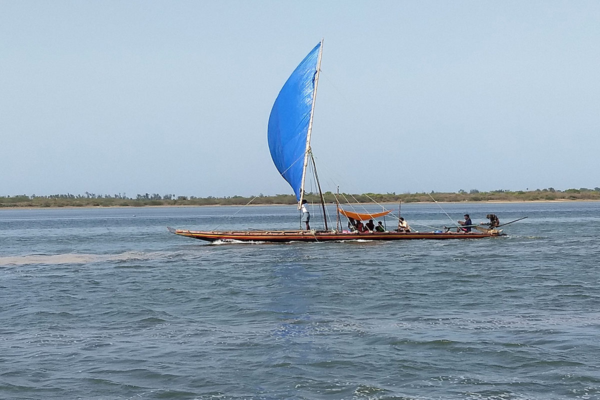 The livelihoods of several communities around the Pulicat lake depend on the health of the region's mangroves and lake. Photo by P Jeganathan/Wikimedia Commons.