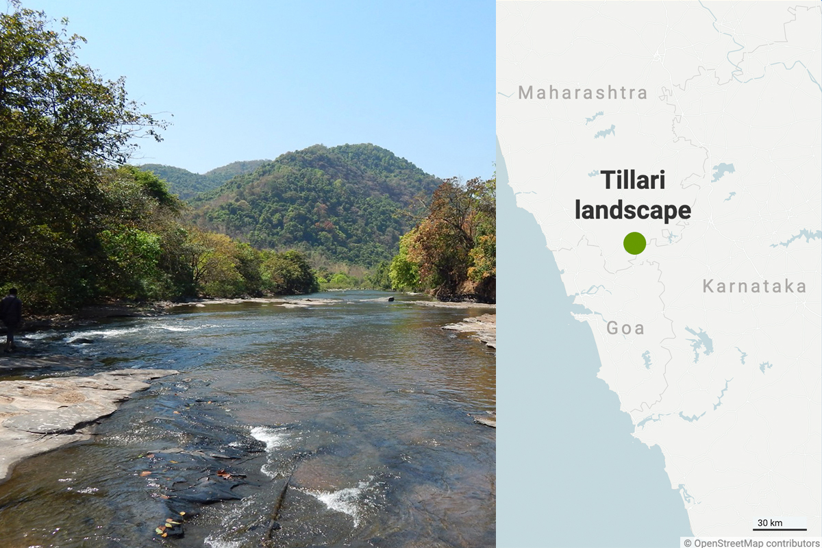 The Tillari landscape in the Western Ghats. Photo by Malhar Indulkar, map from Datawrapper.