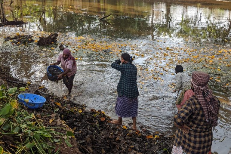 The lamani women helping