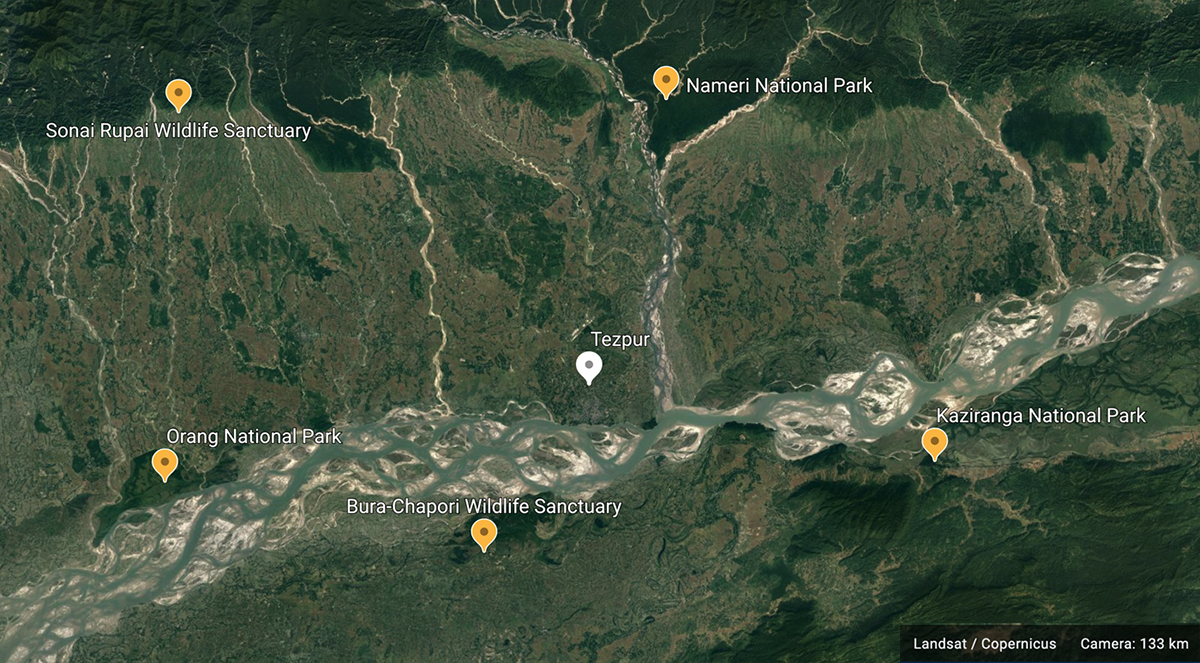Tezpur town on the banks of the Brahmaputra river in Assam is surrounded by protected areas. Map made with Google Earth.