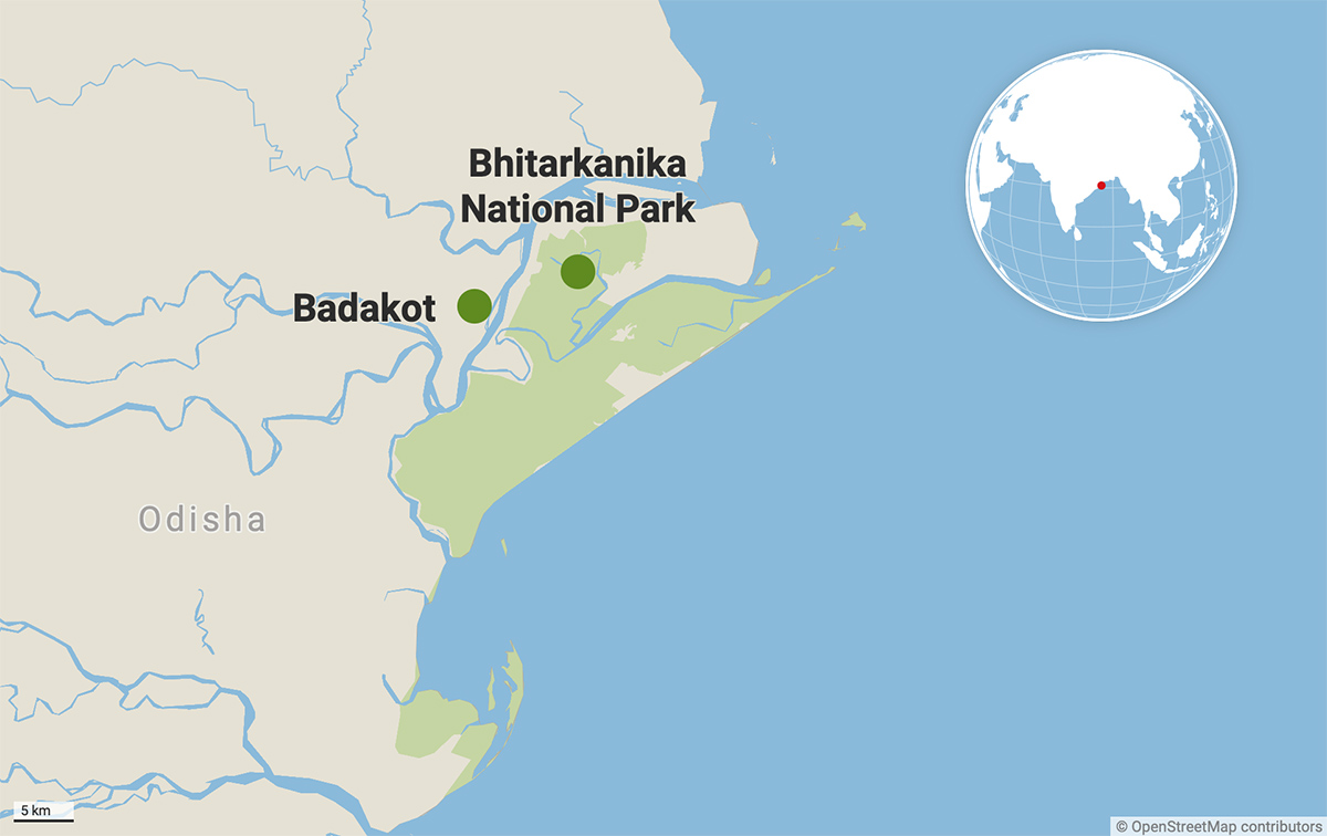 Badakot village in Odisha's Kendrapada district lies at the periphery of Bhitarkanika National Park. The village is prone to natural disasters and river erosion. Map from Datawrapper.