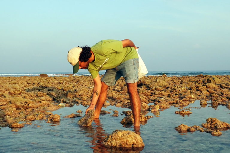 Sudhanshu Dixit collecting marine flatworms from the intertidal area of Agatti Island. Photo from the Centre for Marine Living Resources and Ecology (CMLRE).