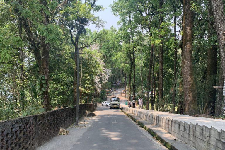 Deorali sacred forest associated with Deorali Chorten Monastery. Photo by Bijayalaxmi et.al.