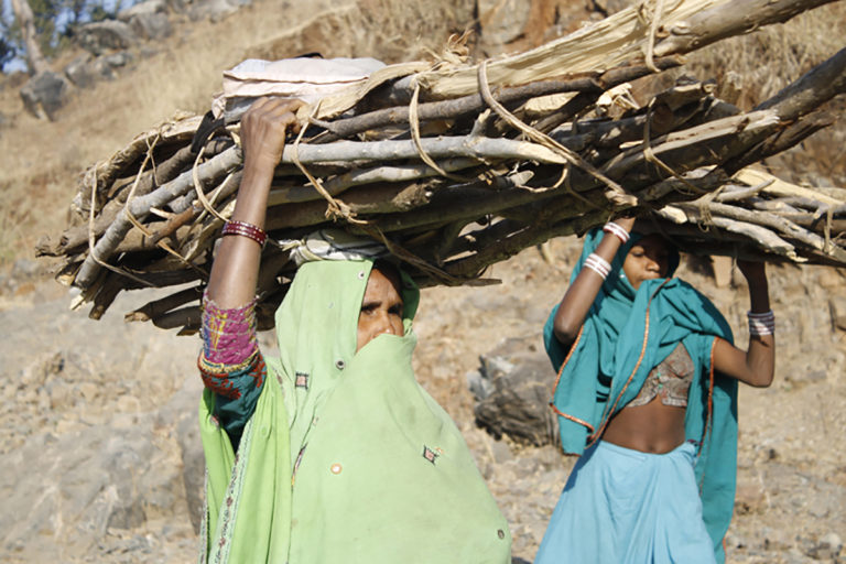 A group of women from a mountain village in Rajasthan carrying firewood on their heads. They walk for an hour each way in sandals to cut the wood. Photo by Karan Singh Rathore/Flickr