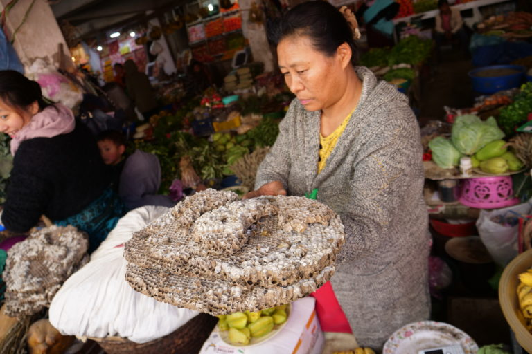 Woman selling hornet hive in Mao market in Kohima, Nagaland. Photo by Ajano Tsanglao.