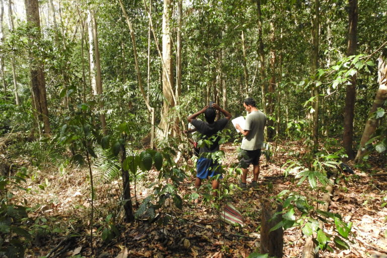 Sampling in a deciduous patch with Jagadish Mondol and Aadhir Sammader. Photo by Akshay Surendra.