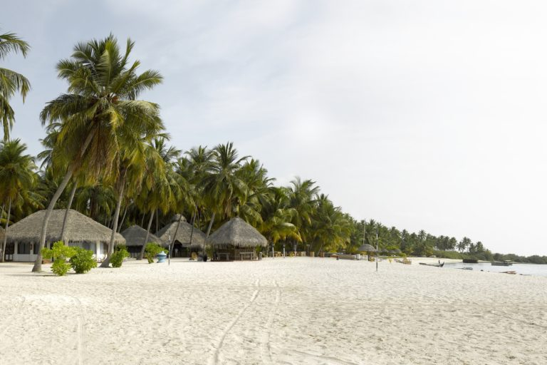 A view of the Agatti beach in Lakshadweep. Photos by special arrangement.