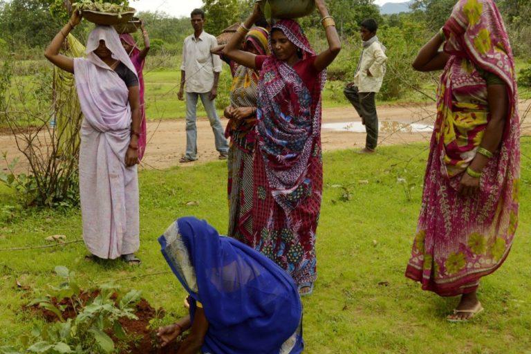 Women planting trees, Umaria district, Madhya Pradesh, India.Yann Forget / Wikimedia Commons