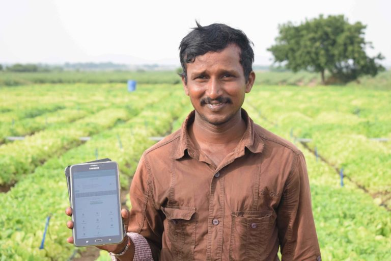 A marginal farmer based in Andhra Pradesh using CropIn's solutions to monitor and boost yield in his 0.15-hectare tobacco farm. Photo courtesy by CropIn.