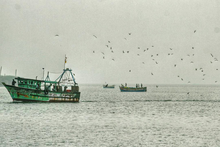 A trawl boat returning after a day of fishing along the Southern Coast of Tamil Nadu. Photo by Tanvi Vaidyanathan/Project Seahorse.