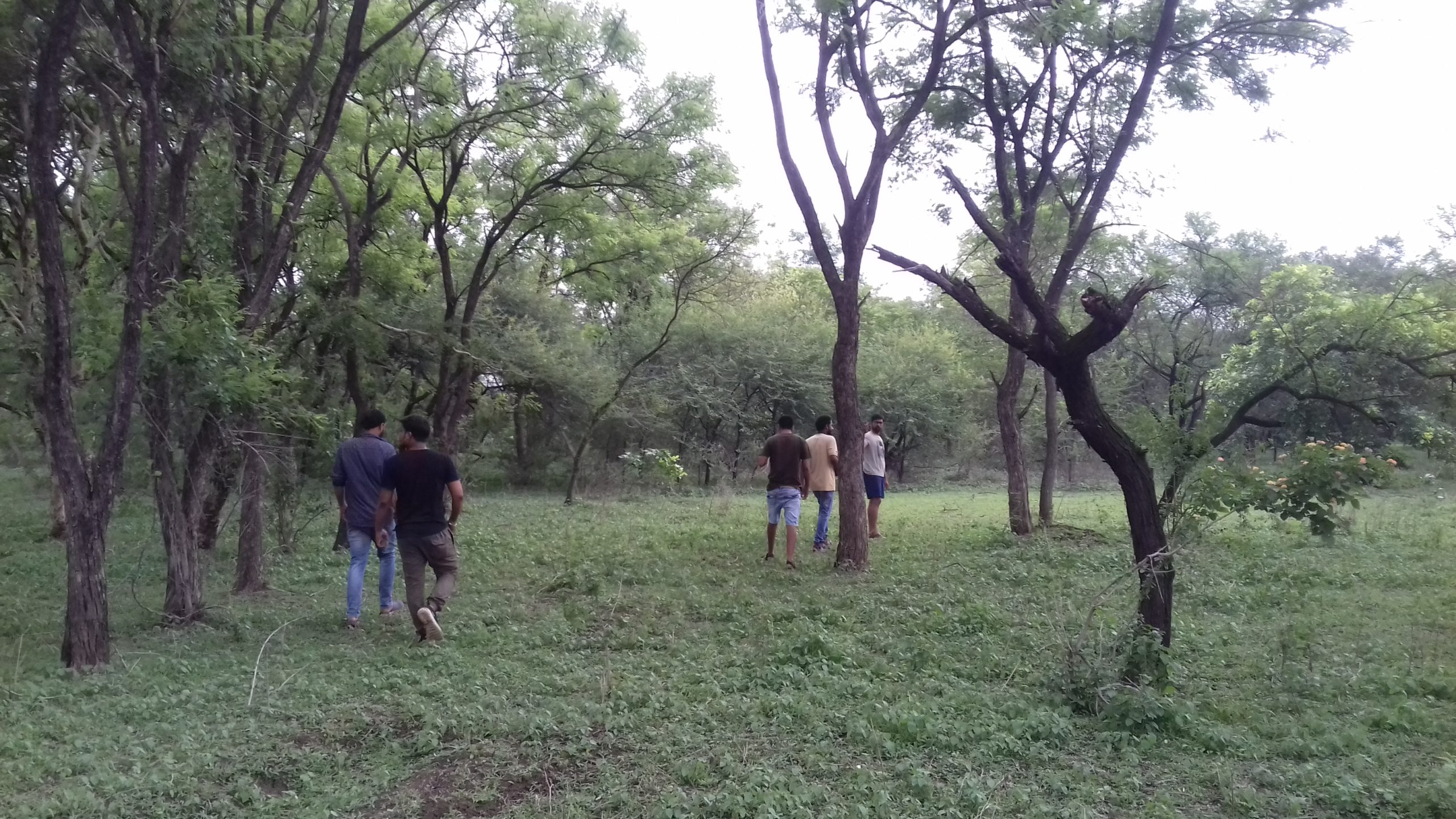 Participants take part in a baseline survey to assess the local biodiversity status. Photo by Abhishek Maitry.