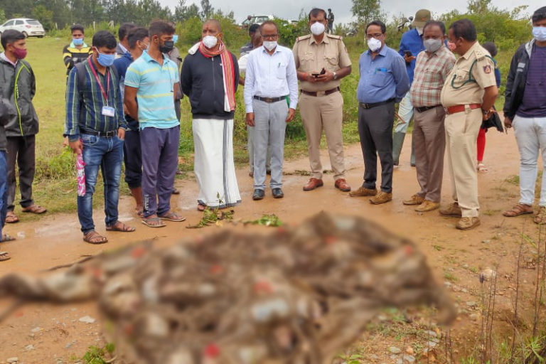 A horde of personnel from the police, forest department, veterinarians and district administration descend on Ugane village on the foothills of the Western Ghats in Hassan district of Karnataka after at least 38 monkeys were killed during their relocation by locals. Photo by special arrangement.