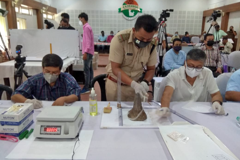 Government officials undertake verification of rhino horns to be set in flames on September 2, World Rhino Day. Photo by P. Siva Kumar, Director, Kaziranga National Park and Tiger Reserve.