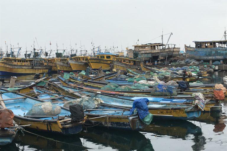Boats parked in Vishakapatnam fishing harbour.