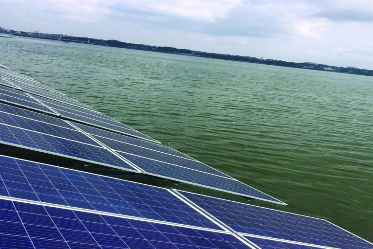 Solar panels along Bada Talab (Upper Lake) in Bhopal. Photo- Smart city Bhopal