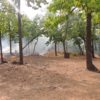 Forest fires. Photo by by Anoushka Trivedi/ Wikimedia Commons